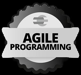 agile-programming.png
