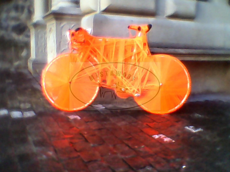 Lucerne, Wrapped Bike