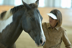 Simple Equine Teaching - Helping Out