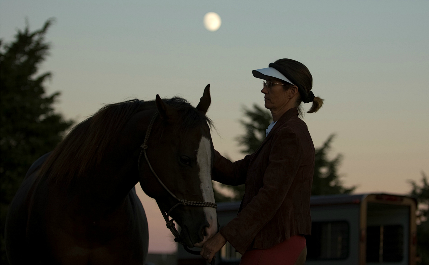 Simple Equine Teaching - Day's End