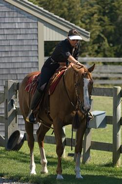 Simple Equine Teaching - Cru1