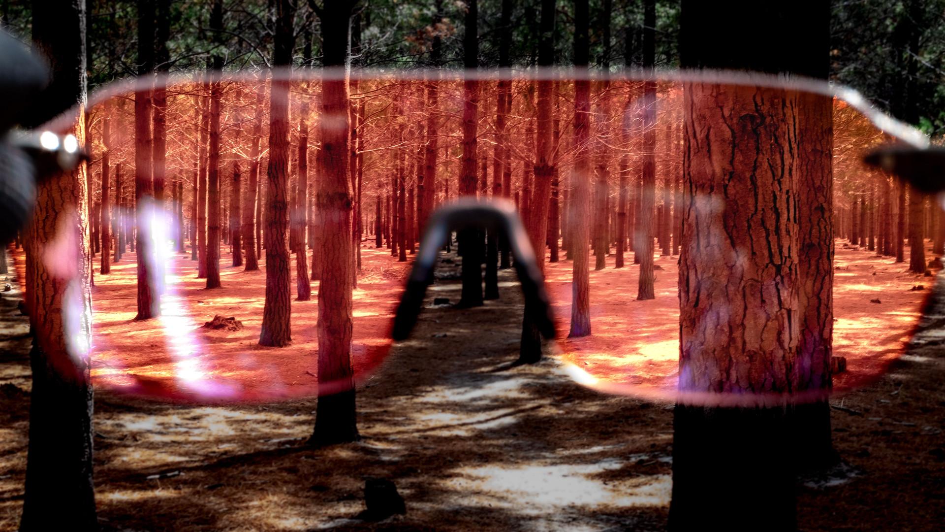 D_Arcs Aura HD 2.jpg