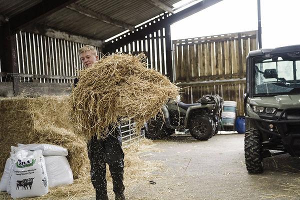 MY19-orv-uk-wabft-luke-hay-feeding-3748.