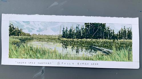 Sherd Lake Drainage, The Bighorns