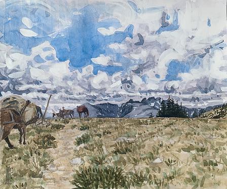 Approaching Highland Park, Cloud Peak Wilderness, The Bighorns