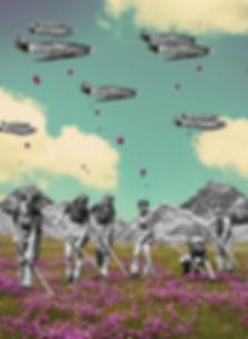 flower_bombs2.jpg