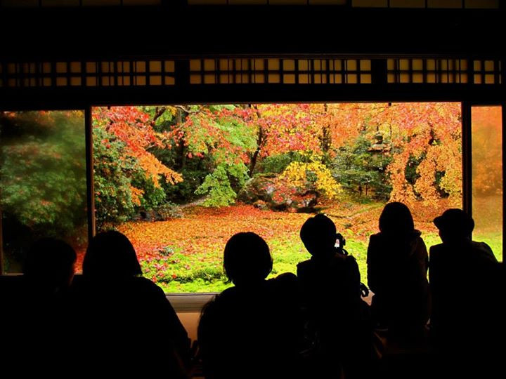 Facebook - a part of Kyoto in Autumn 本日の夜勤明け散歩