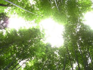 月1定期開催in京都