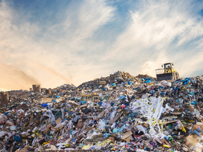 Waste Management: A Market that Serves Everyone