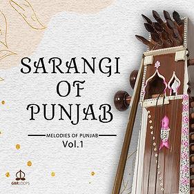 Sarangi of Punjab 1.jpg