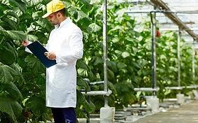 ingeniería_agroindustrial.jpg