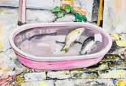 물고기 Fish