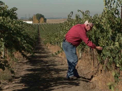 Preston Winery