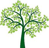 gen tree.jpg
