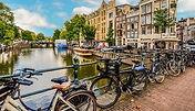 sight seer amsterdam.jpg