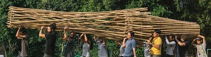 bambu 4.PNG