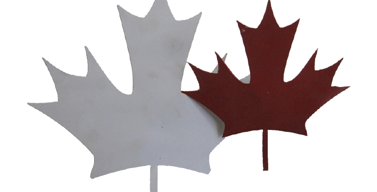 Canadian Maple Leafs on a stick
