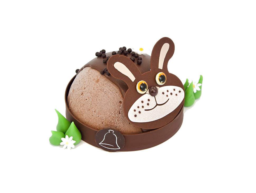 lapin%20glace%20_edited.png