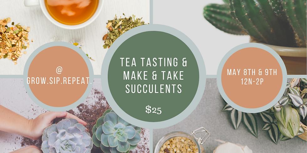 Tea Tasting and Succulent Make and Take