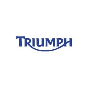 triumph-2-logo-primary.jpg