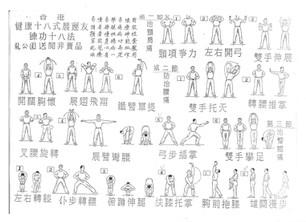 Lian Gong Shi Ba Fa - aide-mémoire