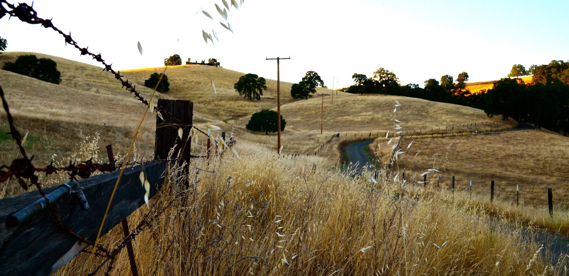Backroads of Amador City, CA