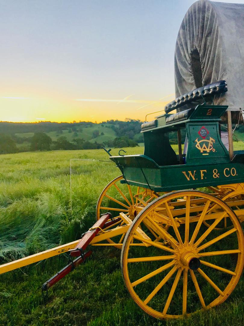 Wagon Train 2018