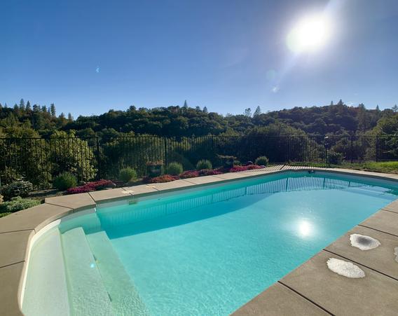Backyard / Pool