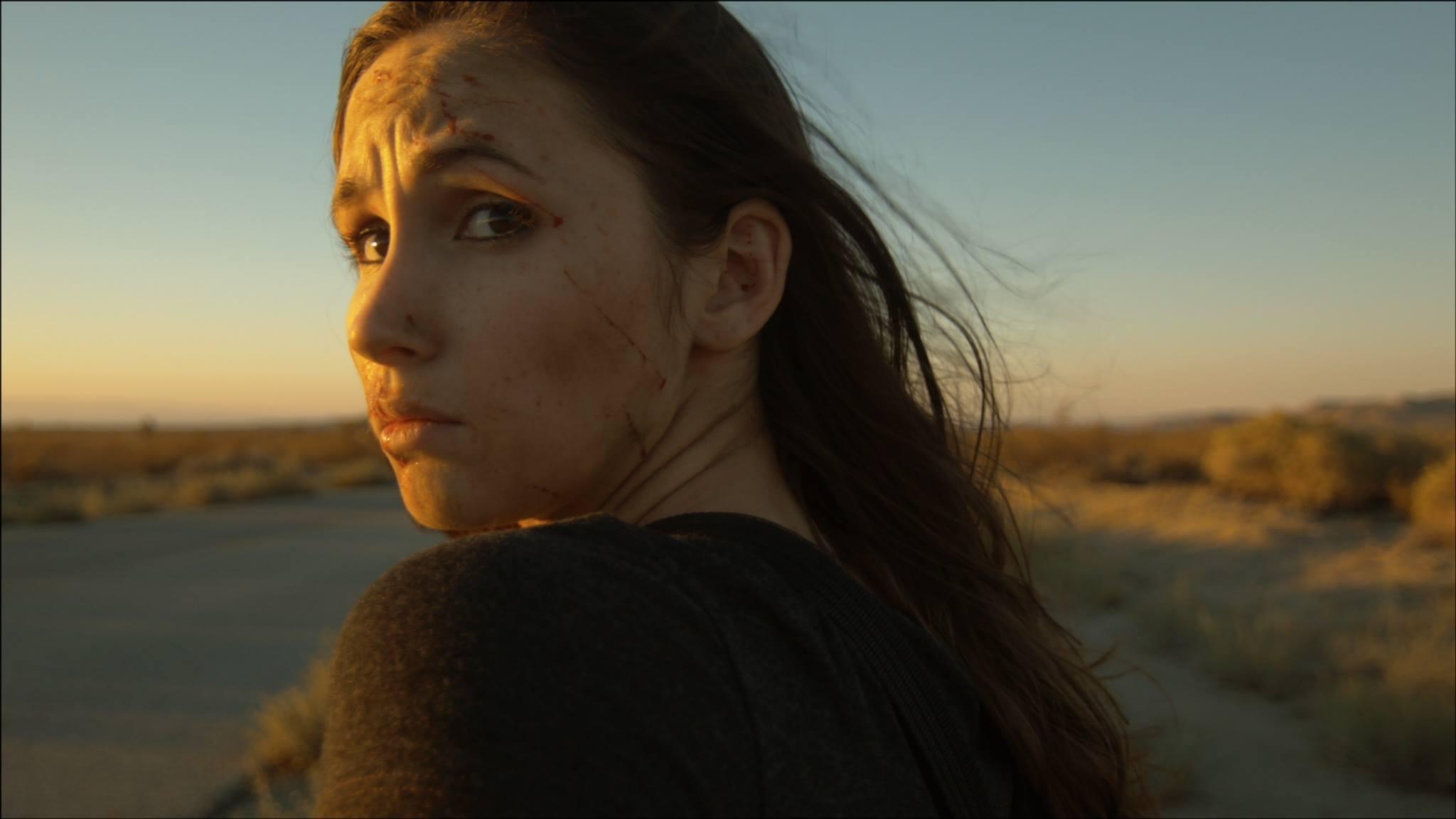 Stray Trailer