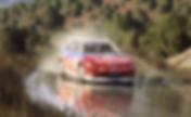 Dirt Rally 2 Screenshot 2019.03.10 - 17.