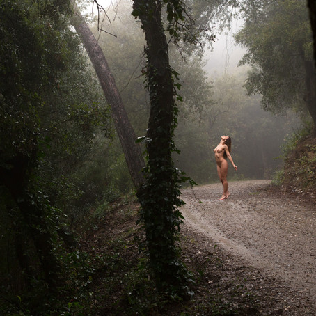 "SERIE Photos - ""Wolf lullaby"""