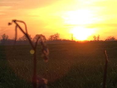 eva solnedgang.jpeg
