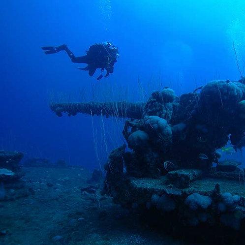 SDI Deep Diver 40m