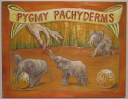 PYGMY PACHYDERMS