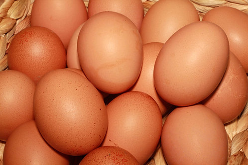 Eggs - Large x 6 (£0.28 each)