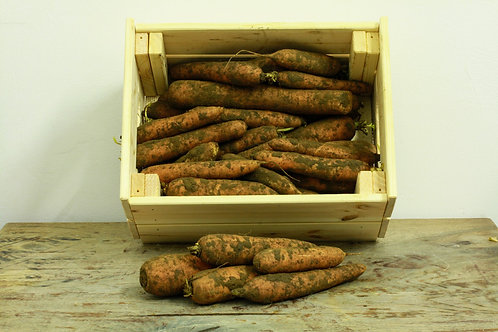 Carrots - org, dirty (1.45/kg)