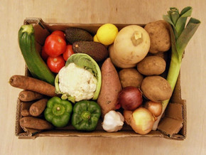 Veggie Boxes are here!