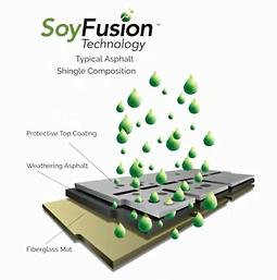soy fusion technology_JPG.webp