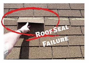 roof seal fail.webp