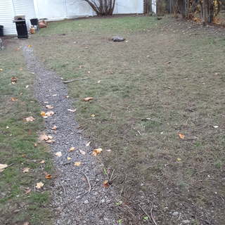 Secure Fenced-In Backyard