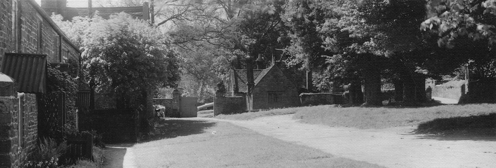 A postcard of the cottages and village green at Eydon.