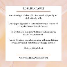 Rosa Bandagat.png