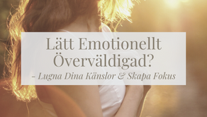 Lätt Emotionellt Överväldigad? Lugna dina känslor och skapa fokus.