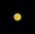 NG Black lines (PNG).png