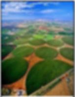 Crop field navajo.jpg