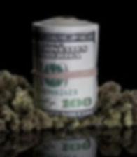 marijuana-cash.jpg