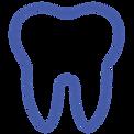 Pet Dental Work