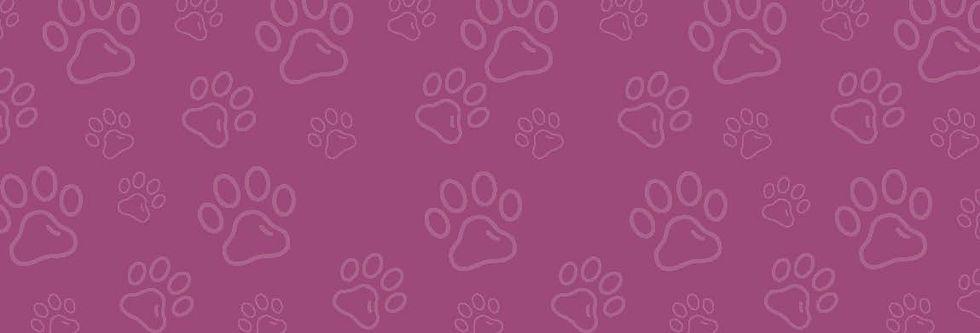 1231 - Background design for Woodcroft Vets Website.jpg