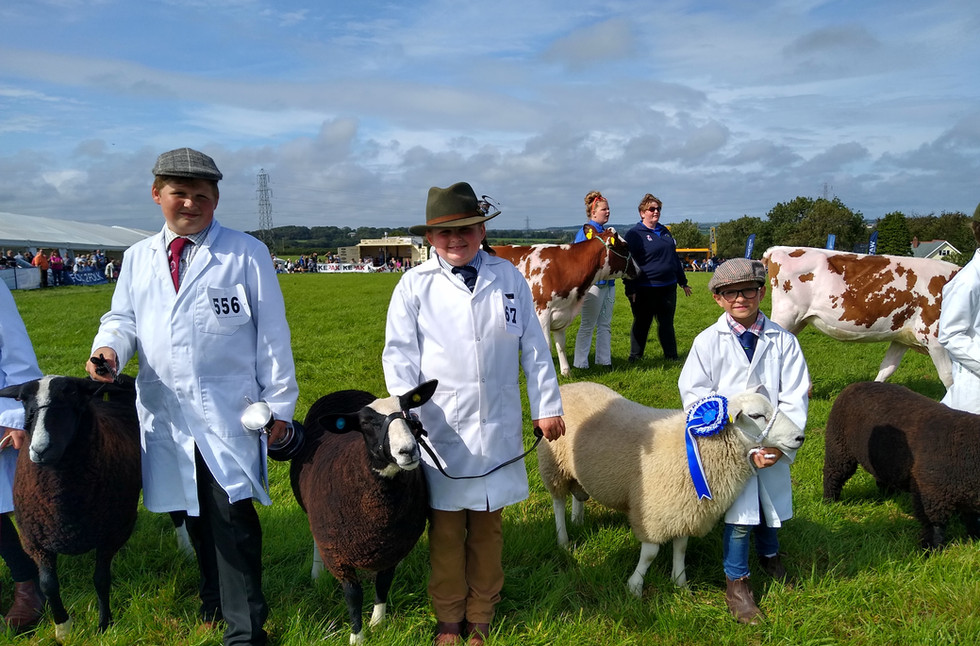 Young Handlers at Holsworthy & Stratton Show