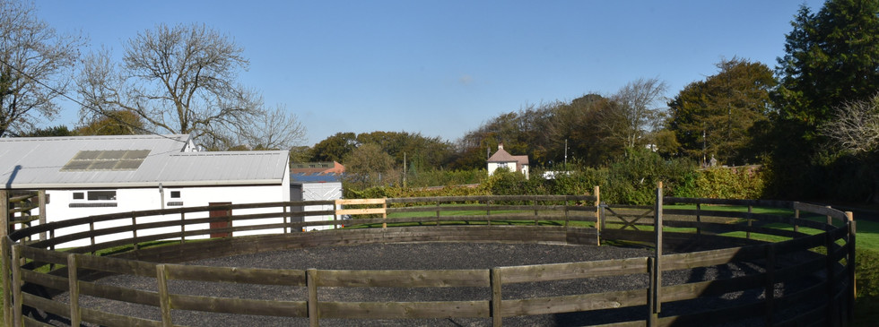 Soft lunging area and clinic building